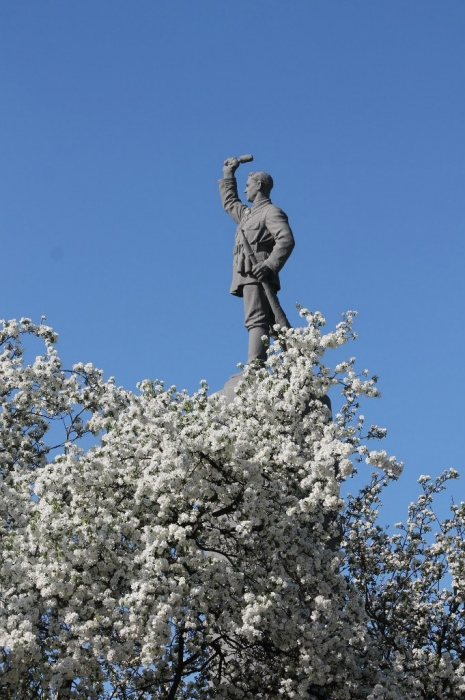 Е. Захаров.  Памятник рабочим, погибшим при обороне Пулковских высот во время гражданской войны и интервенции в Колпино.