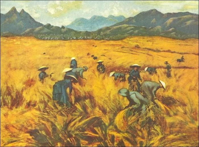 Фан Кэ Ан. Уборка урожая во Вьетбаке. Лак. 1953 г.